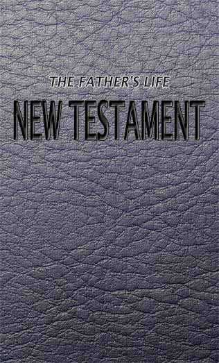 The New Testament Audio MP3 Version Book Cover Image