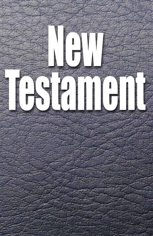 The New Testament, Audio book by David W. Dyer