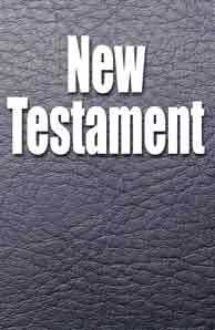 "New Testament ""Fathers Life Version"" translated by David Dyer"
